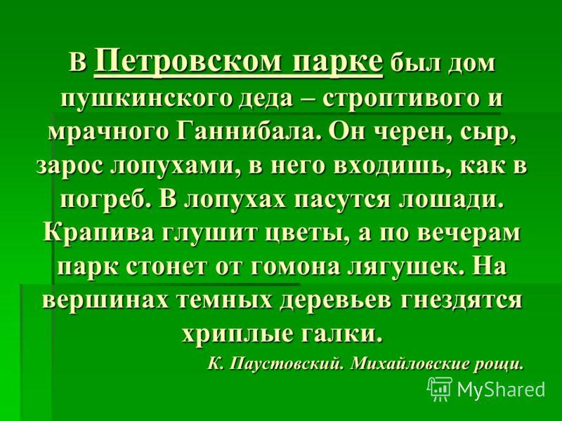 В Петровском парке был дом пушкинского деда – строптивого и мрачного Ганнибала. Он черен, сыр, зарос лопухами, в него входишь, как в погреб. В лопухах пасутся лошади. Крапива глушит цветы, а по вечерам парк стонет от гомона лягушек. На вершинах темны