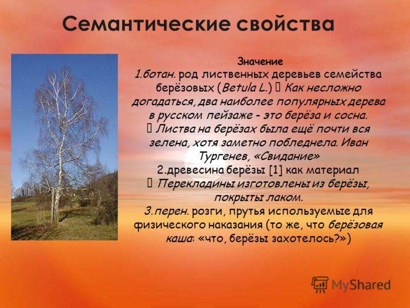 Семантические свойства Значение 1.ботан. род лиственных деревьев семейства берёзовых (Betula L.) Как несложно догадаться, два наиболее популярных дерева в русском пейзаже - это берёза и сосна. Листва на берёзах была ещё почти вся зелена, хотя заметно