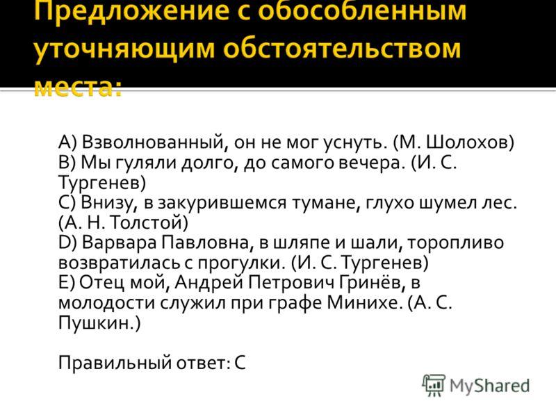 A) Взволнованный, он не мог уснуть. (М. Шолохов) B) Мы гуляли долго, до самого вечера. (И. С. Тургенев) C) Внизу, в закурившемся тумане, глухо шумел лес. (А. Н. Толстой) D) Варвара Павловна, в шляпе и шали, торопливо возвратилась с прогулки. (И. C. Т