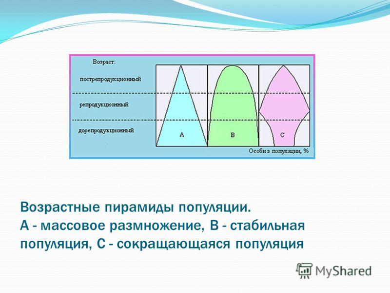 Возрастные пирамиды популяции. А - массовое размножение, В - стабильная популяция, С - сокращающаяся популяция