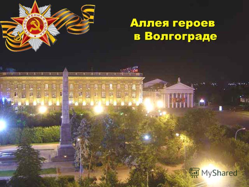 Аллея героев в Волгограде в Волгограде