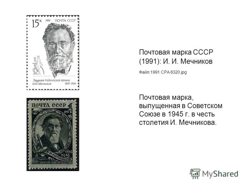 Почтовая марка СССР (1991): И. И. Мечников Файл:1991 CPA 6320.jpg Почтовая марка, выпущенная в Советском Союзе в 1945 г. в честь столетия И. Мечникова.