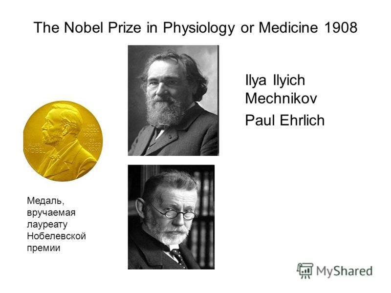 The Nobel Prize in Physiology or Medicine 1908 Ilya Ilyich Mechnikov Paul Ehrlich Медаль, вручаемая лауреату Нобелевской премии