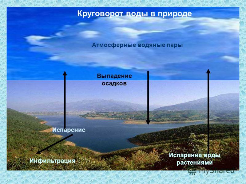 Испарение воды растениями Испарение Выпадение осадков Атмосферные водяные пары Инфильтрация Круговорот воды в природе