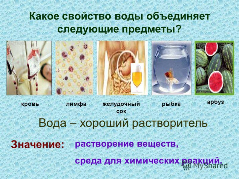 Какое свойство воды объединяет следующие предметы? кровьлимфажелудочный сок рыбка арбуз Значение: Вода – хороший растворитель растворение веществ, среда для химических реакций.