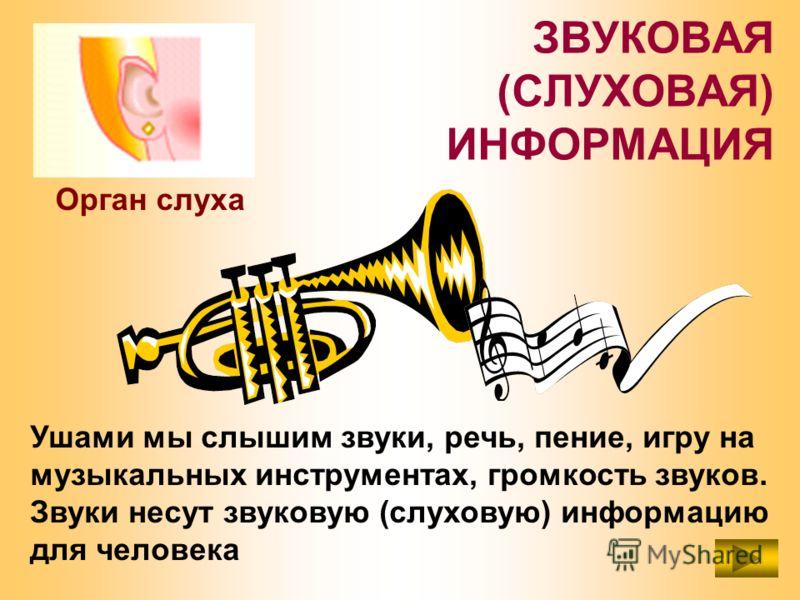 ЗВУКОВАЯ (СЛУХОВАЯ) ИНФОРМАЦИЯ Ушами мы слышим звуки, речь, пение, игру на музыкальных инструментах, громкость звуков. Звуки несут звуковую (слуховую) информацию для человека Орган слуха