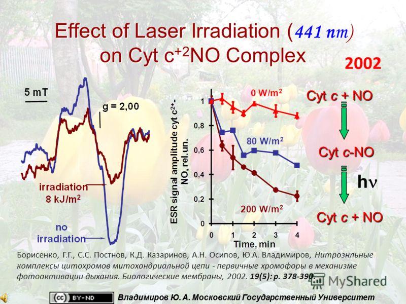 Владимиров Ю. А. Московский Государственный Университет Effect of Laser Irradiation ( on Cyt c +2 NO Complex Effect of Laser Irradiation ( 441 nm) on Cyt c +2 NO Complex Cyt c + NO h Cyt c-NO Борисенко, Г.Г., С.С. Постнов, К.Д. Казаринов, А.Н. Осипов