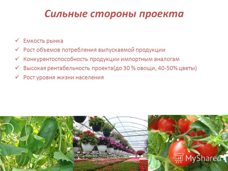 Сильные стороны проекта Емкость рынка Рост объемов потребления выпускаемой продукции Конкурентоспособность продукции импортным аналогам Высокая рентабельность проекта(до 30 % овощи, 40-50% цветы) Рост уровня жизни населения 6