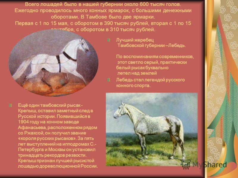 Всего лошадей было в нашей губернии около 600 тысяч голов. Ежегодно проводилось много конных ярмарок, с большими денежными оборотами. В Тамбове было две ярмарки. Первая с 1 по 15 мая, с оборотом в 390 тысяч рублей, вторая с 1 по 15 сентября, с оборот