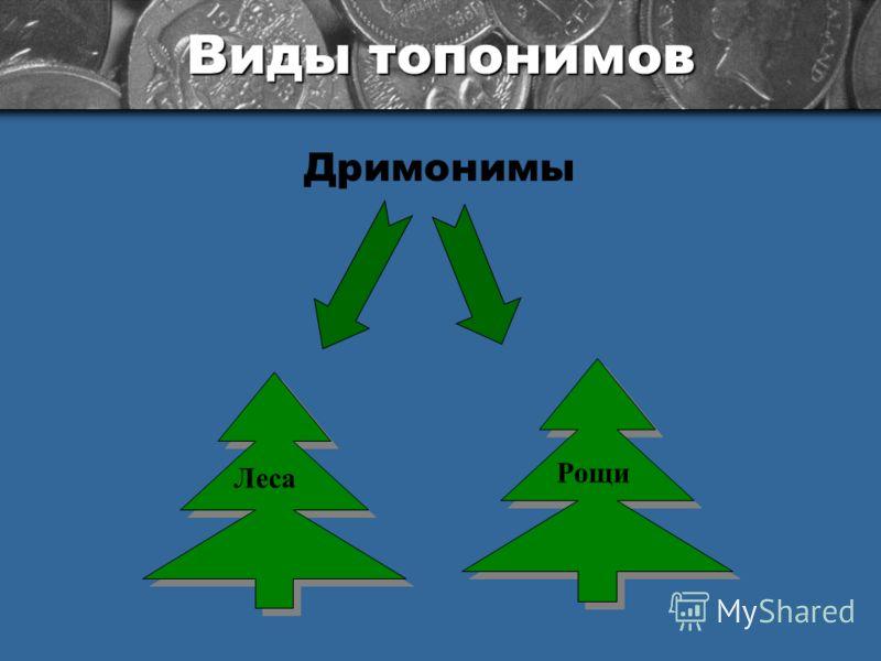 Виды топонимов Дримонимы Леса Рощи
