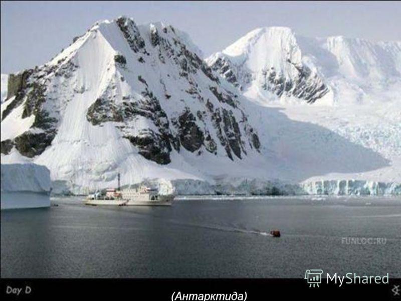 (Антарктида)