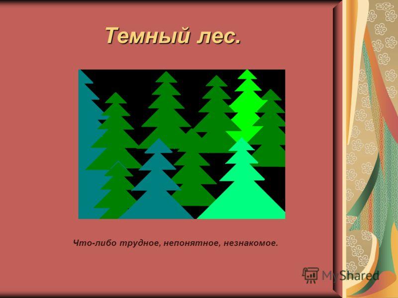Темный лес. Что-либо трудное, непонятное, незнакомое.