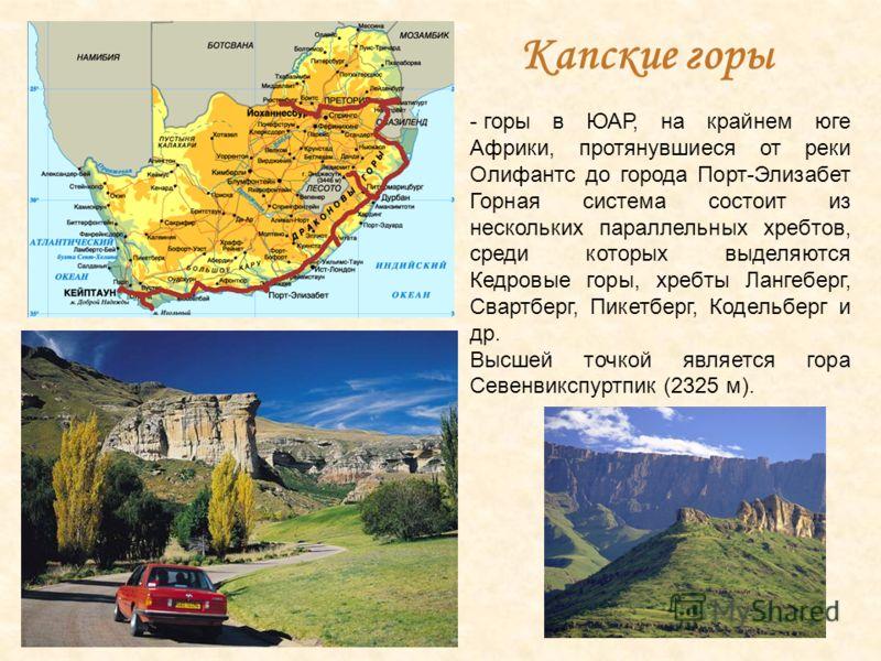 Капские горы - горы в ЮАР, на крайнем юге Африки, протянувшиеся от реки Олифантс до города Порт-Элизабет Горная система состоит из нескольких параллельных хребтов, среди которых выделяются Кедровые горы, хребты Лангеберг, Свартберг, Пикетберг, Кодель
