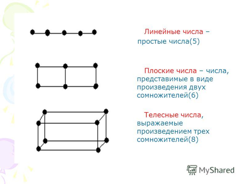 Линейные числа – простые числа(5) Плоские числа – числа, представимые в виде произведения двух сомножителей(6) Телесные числа, выражаемые произведением трех сомножителей(8)