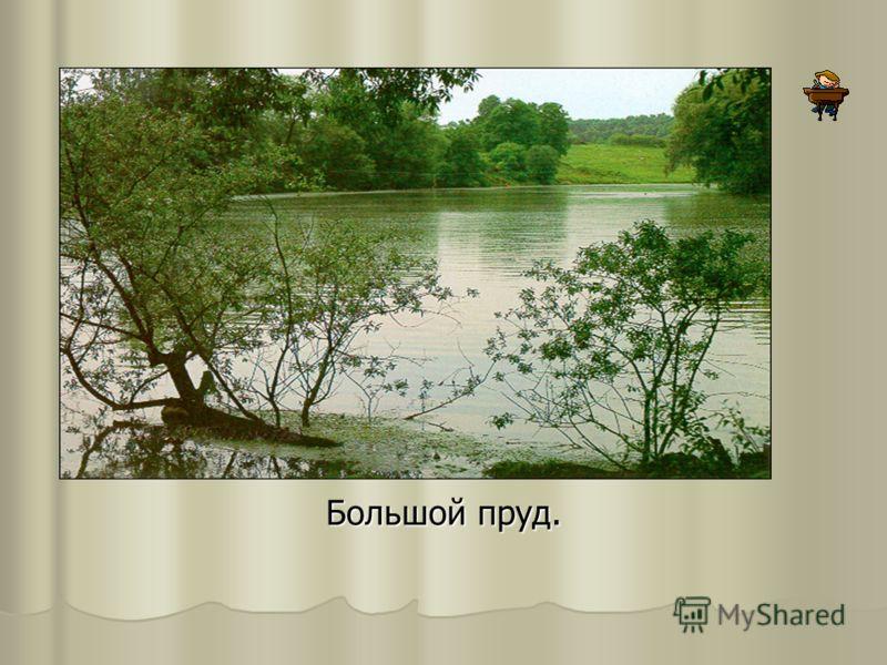 Большой пруд.