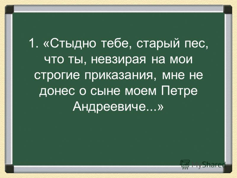 1. «Стыдно тебе, старый пес, что ты, невзирая на мои строгие приказания, мне не донес о сыне моем Петре Андреевиче...»