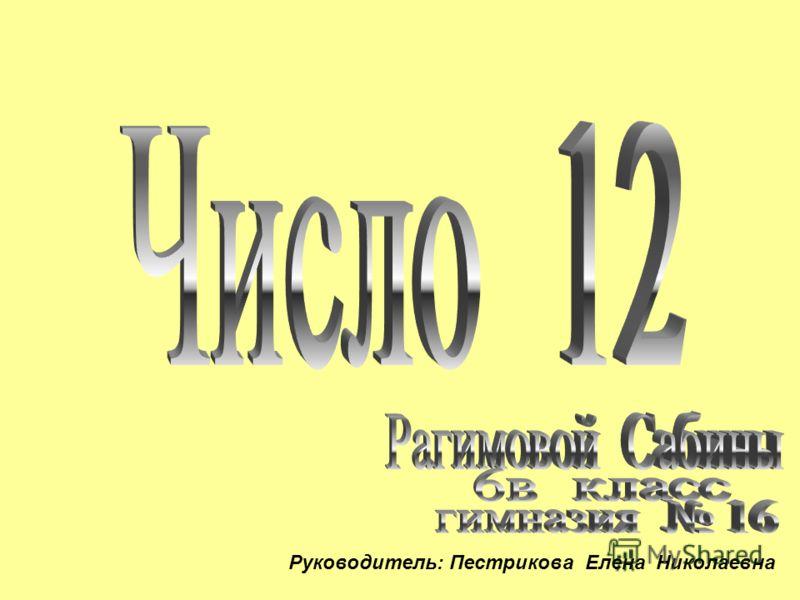 Руководитель: Пестрикова Елена Николаевна