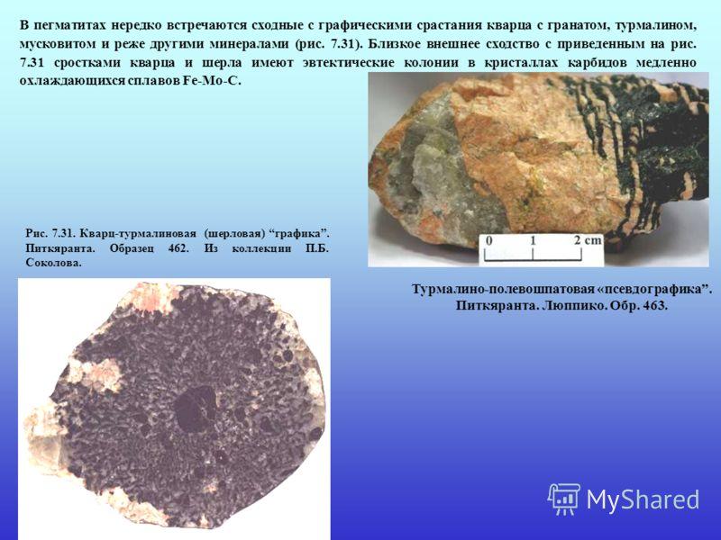 В пегматитах нередко встречаются сходные с графическими срастания кварца с гранатом, турмалином, мусковитом и реже другими минералами (рис. 7.31). Близкое внешнее сходство с приведенным на рис. 7.31 сростками кварца и шерла имеют эвтектические колони