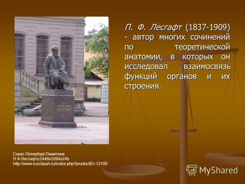 П. Ф. Лесгафт (1837-1909) - автор многих сочинений по теоретической анатомии, в которых он исследовал взаимосвязь функций органов и их строения. Санкт-Петербург.Памятник П.Ф.Лесгафту.2448х3264х24b http://www.rusclipart.ru/index.php?productID=12109