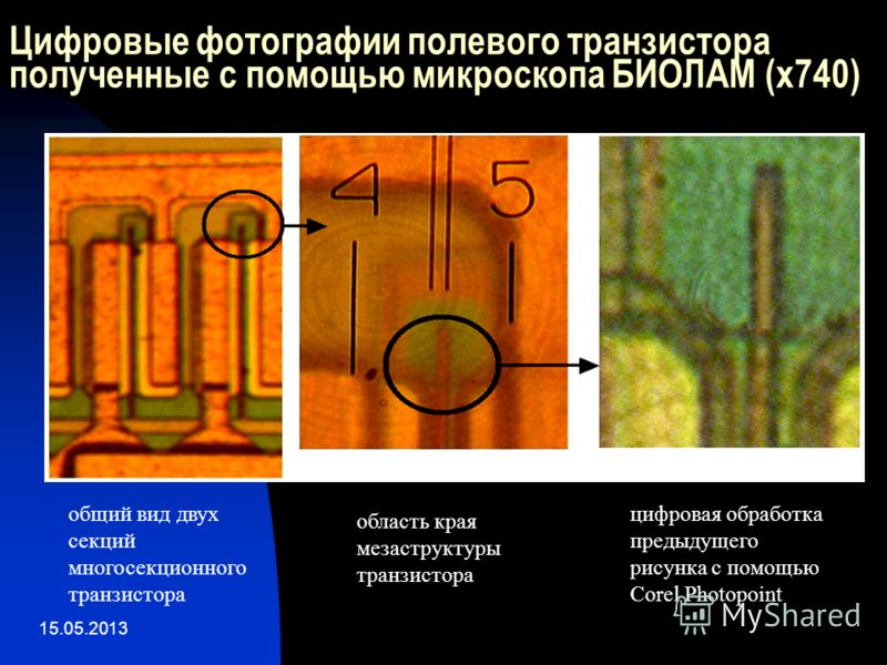 15.05.2013 Цифровые фотографии полевого транзистора полученные с помощью микроскопа БИОЛАМ (x740) общий вид двух секций многосекционного транзистора область края мезаструктуры транзистора цифровая обработка предыдущего рисунка с помощью Corel Photopo