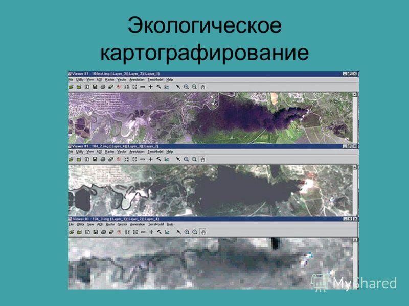 Экологическое картографирование