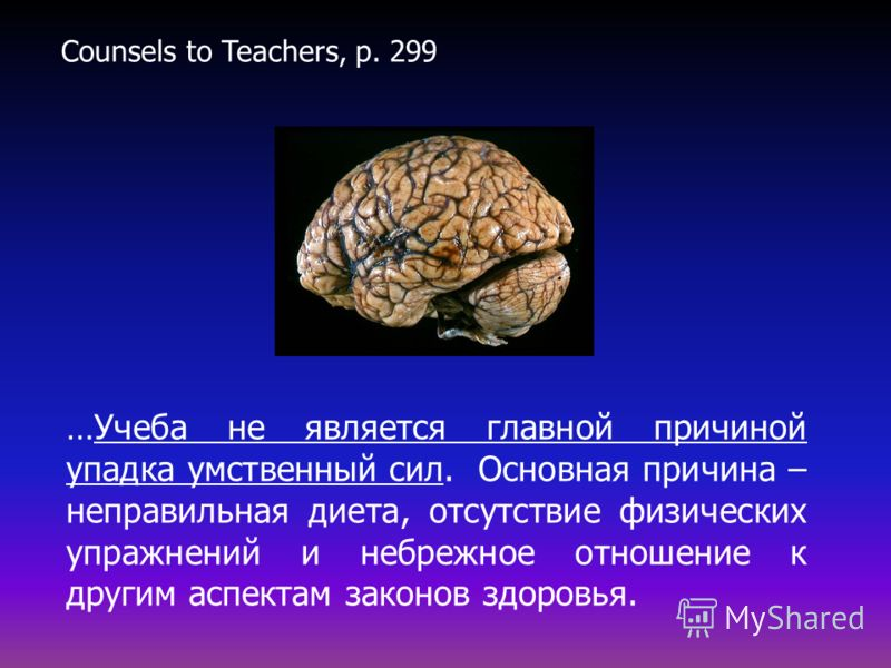 …Учеба не является главной причиной упадка умственный сил. Основная причина – неправильная диета, отсутствие физических упражнений и небрежное отношение к другим аспектам законов здоровья. Counsels to Teachers, p. 299