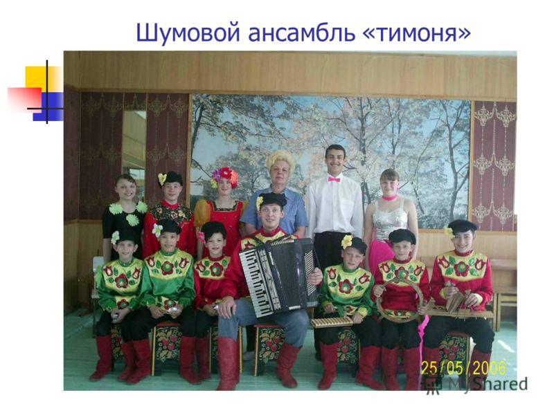 Шумовой ансамбль «тимоня»