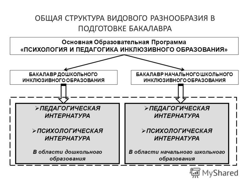 ОБЩАЯ СТРУКТУРА ВИДОВОГО РАЗНООБРАЗИЯ В ПОДГОТОВКЕ БАКАЛАВРА Основная Образовательная Программа «ПСИХОЛОГИЯ И ПЕДАГОГИКА ИНКЛЮЗИВНОГО ОБРАЗОВАНИЯ» БАКАЛАВР ДОШКОЛЬНОГО ИНКЛЮЗИВНОГО ОБРАЗОВАНИЯ БАКАЛАВР НАЧАЛЬНОГО ШКОЛЬНОГО ИНКЛЮЗИВНОГО ОБРАЗОВАНИЯ ПЕ