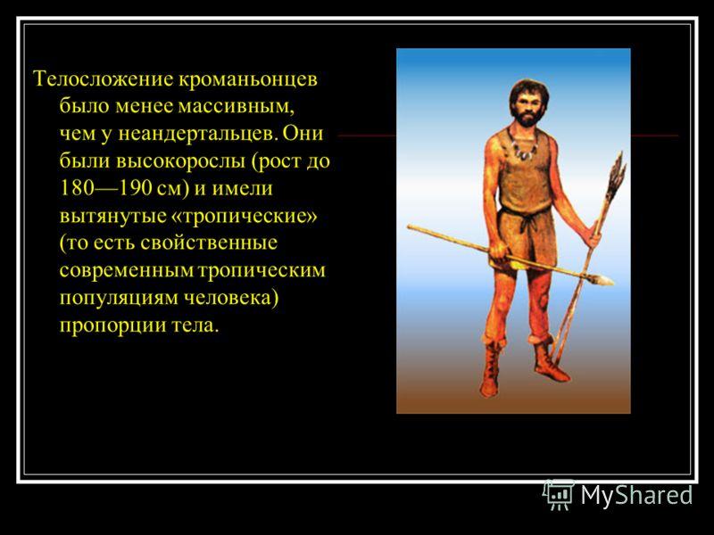Телосложение кроманьонцев было менее массивным, чем у неандертальцев. Они были высокорослы (рост до 180190 см) и имели вытянутые «тропические» (то есть свойственные современным тропическим популяциям человека) пропорции тела.