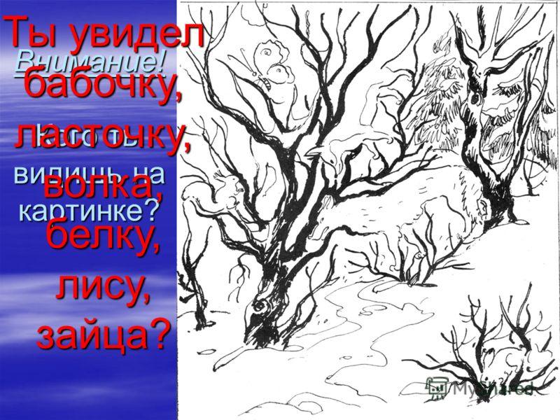 Внимание! Кого ты видишь на картинке? Ты увидел бабочку, ласточку, волка, белку, лису, зайца?