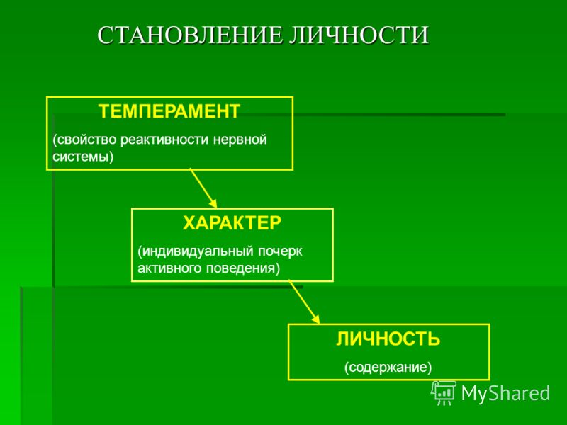 СТАНОВЛЕНИЕ ЛИЧНОСТИ ТЕМПЕРАМЕНТ (свойство реактивности нервной системы) ХАРАКТЕР (индивидуальный почерк активного поведения) ЛИЧНОСТЬ (содержание)