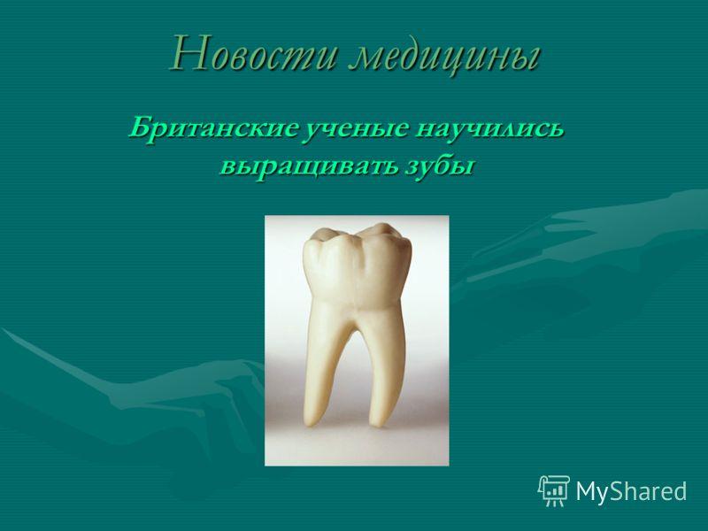 Новости медицины Британские ученые научились выращивать зубы
