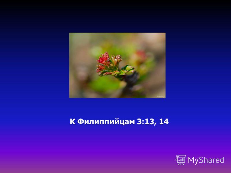 К Филиппийцам 3:13, 14