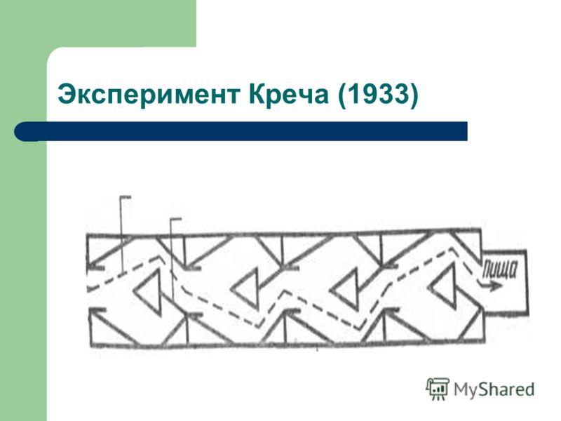 Эксперимент Креча (1933)