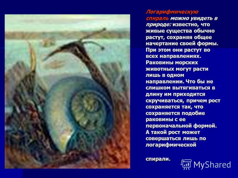 Логарифмическую спираль можно увидеть в природе: известно, что живые существа обычно растут, сохраняя общее начертание своей формы. При этом они растут во всех направлениях. Раковины морских животных могут расти лишь в одном направлении. Что бы не сл