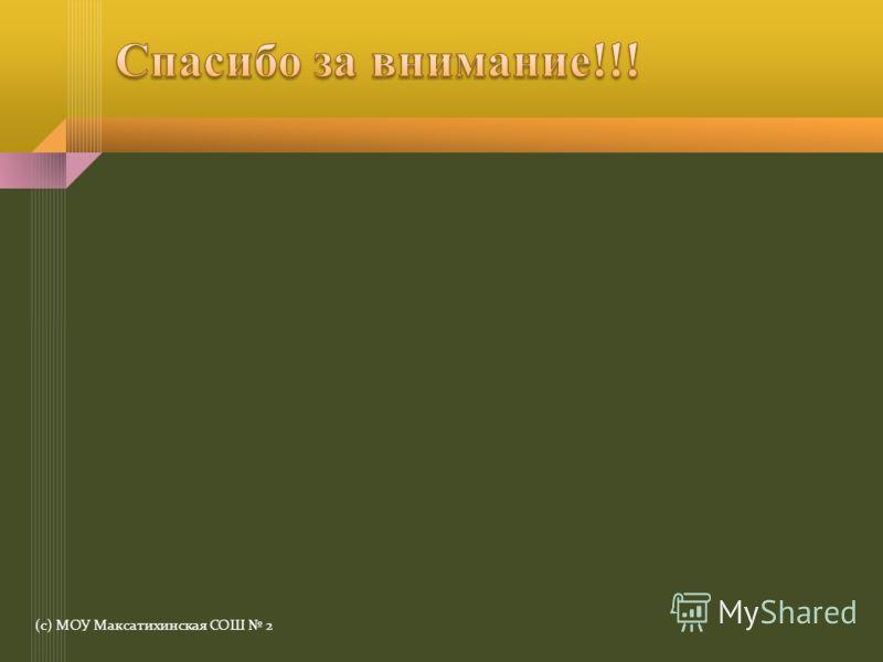 (с) МОУ Максатихинская СОШ 2