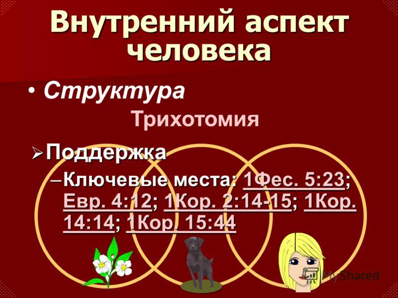 Структура Поддержка Поддержка –Ключевые места: 1Фес. 5:23; Евр. 4:12; 1Кор. 2:14-15; 1Кор. 14:14; 1Кор. 15:44 1Фес. 5:23 Евр. 4:121Кор. 2:14-151Кор. 14:141Кор. 15:441Фес. 5:23 Евр. 4:121Кор. 2:14-151Кор. 14:141Кор. 15:44 Внутренний аспект человека Тр