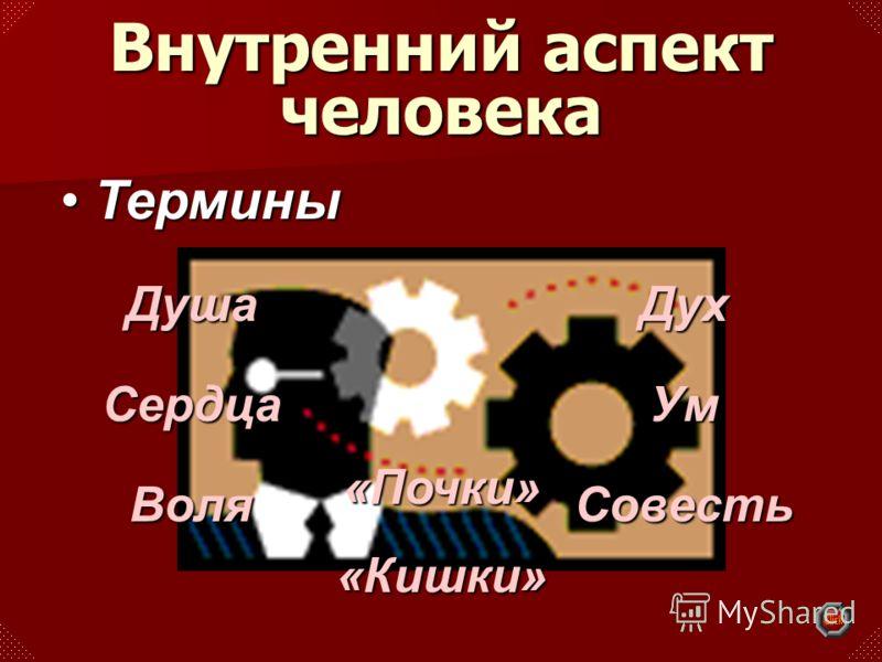 ДушаСердцаВоляДухУмСовесть «Почки»«Кишки» ТерминыТермины