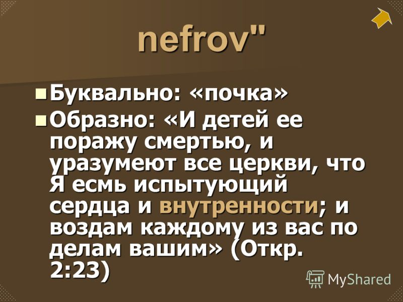 nefrov
