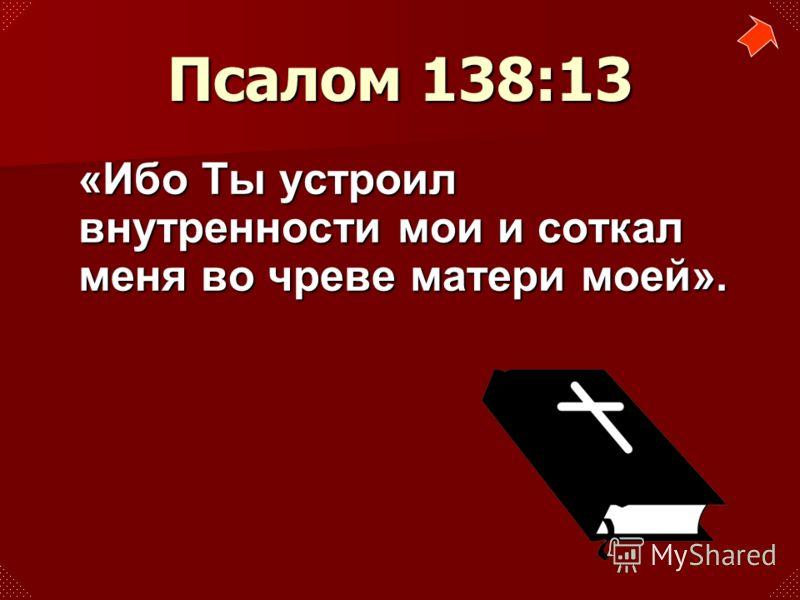 «Ибо Ты устроил внутренности мои и соткал меня во чреве матери моей». Псалом 138:13