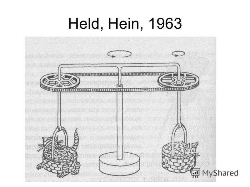 Held, Hein, 1963