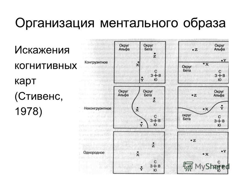 Организация ментального образа Искажения когнитивных карт (Стивенс, 1978)