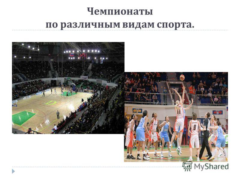 Чемпионаты по различным видам спорта.