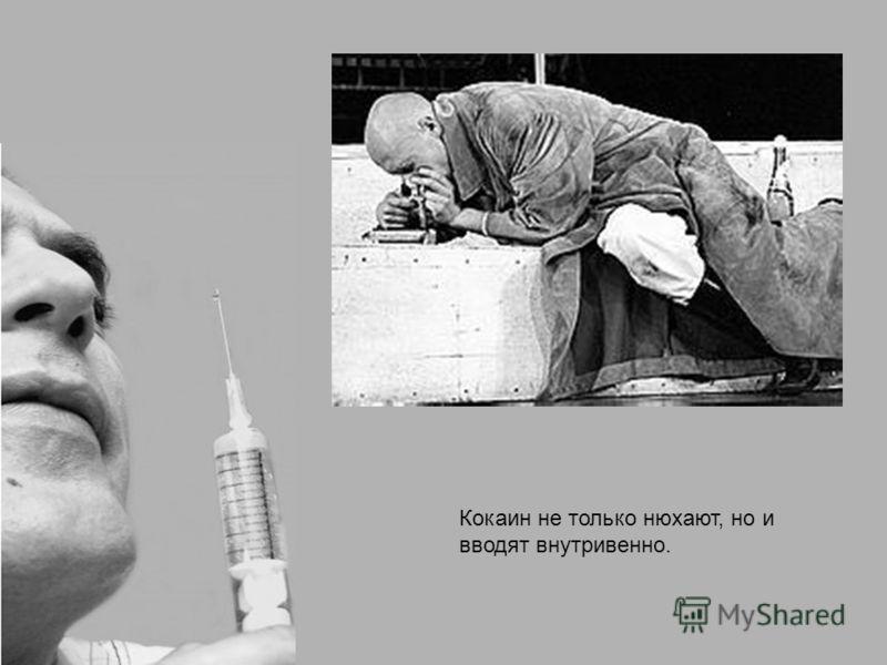 Кокаин не только нюхают, но и вводят внутривенно.