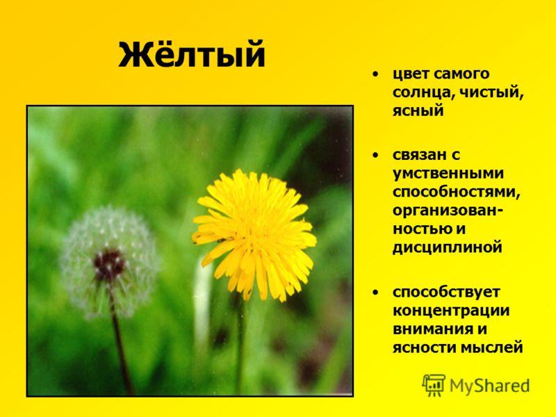 Характеристика жёлтого цвета