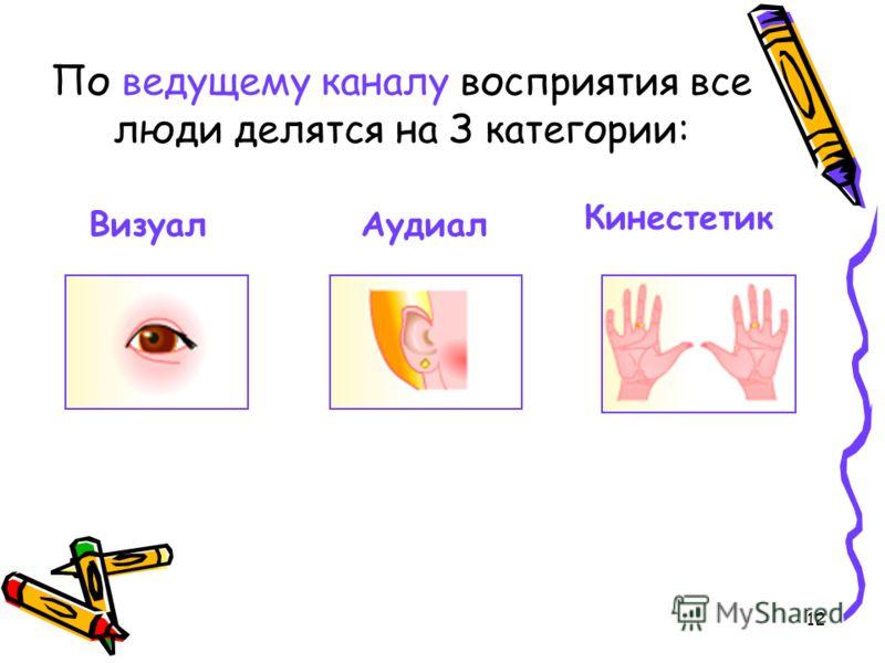 12 По ведущему каналу восприятия все люди делятся на З категории: Кинестетик ВизуалАудиал
