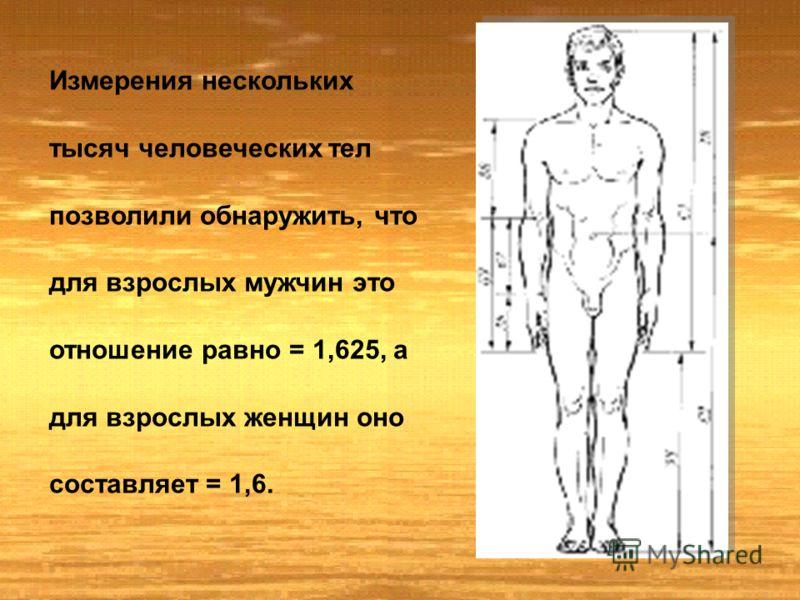 Еще в древности отношения частей человеческого тела связывались с формулой золотого сечения.. Скульпторы утверждают, что талия делит совершенное человеческое тело в отношении «золотого сечения».