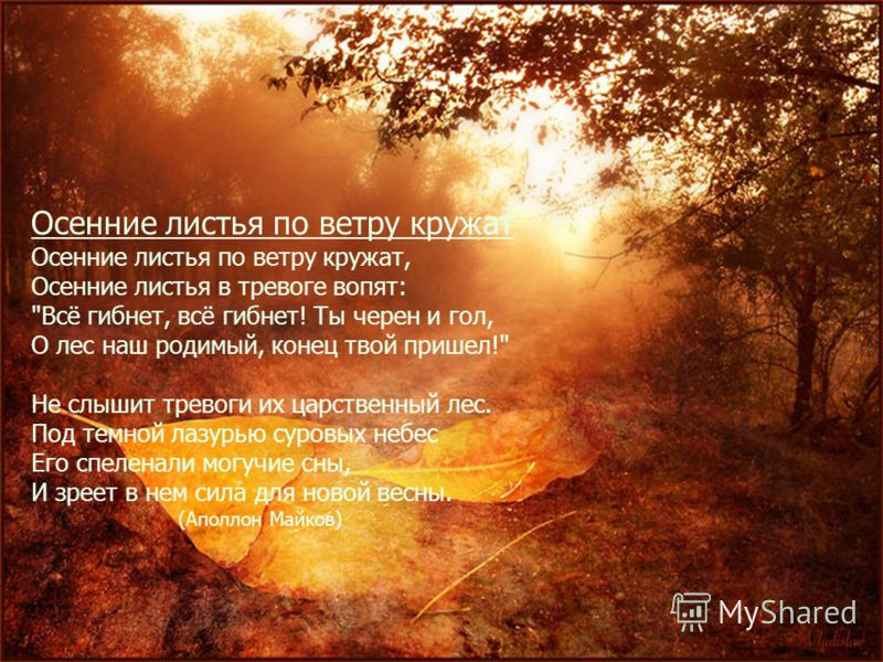 Осенние листья по ветру кружат Осенние листья по ветру кружат, Осенние листья в тревоге вопят: