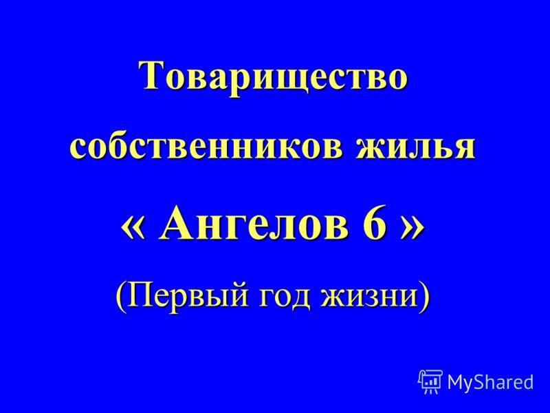 Товарищество собственников жилья « Ангелов 6 » (Первый год жизни)