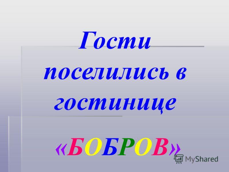 Гости поселились в гостинице «БОБРОВ»«БОБРОВ»